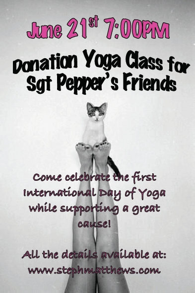 sgt pepper's friends, yoga class, donation yoga class, international day of yoga, popup yoga, popup, yoga class, london yoga, london, rachel brathen, yoga girl, yoga girl instagram, animal rescue